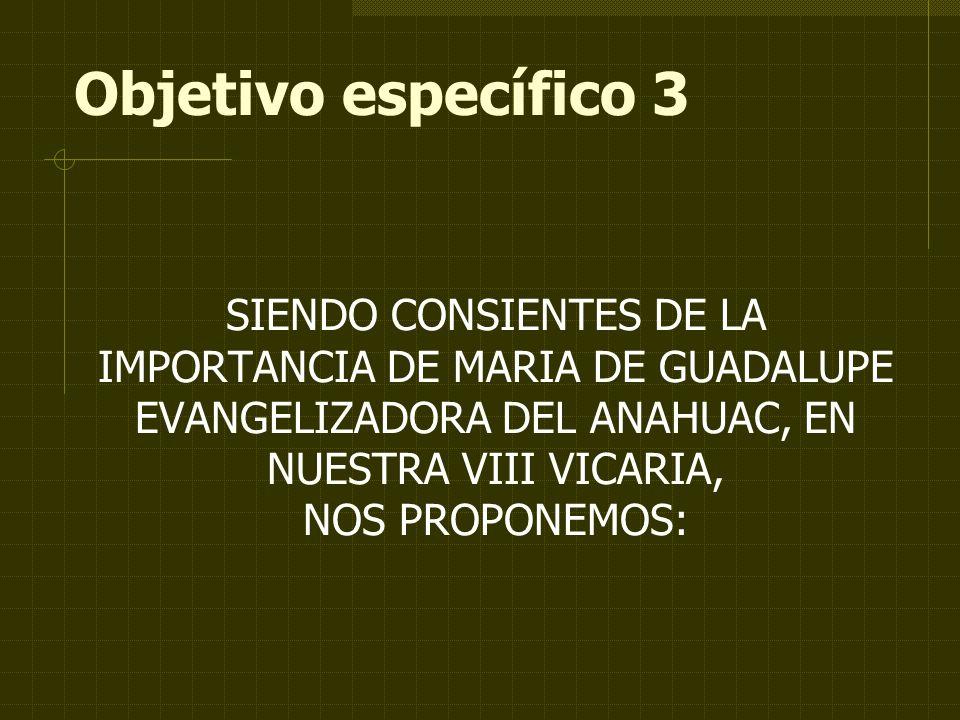 Objetivo específico 3 SIENDO CONSIENTES DE LA IMPORTANCIA DE MARIA DE GUADALUPE EVANGELIZADORA DEL ANAHUAC, EN NUESTRA VIII VICARIA, NOS PROPONEMOS: