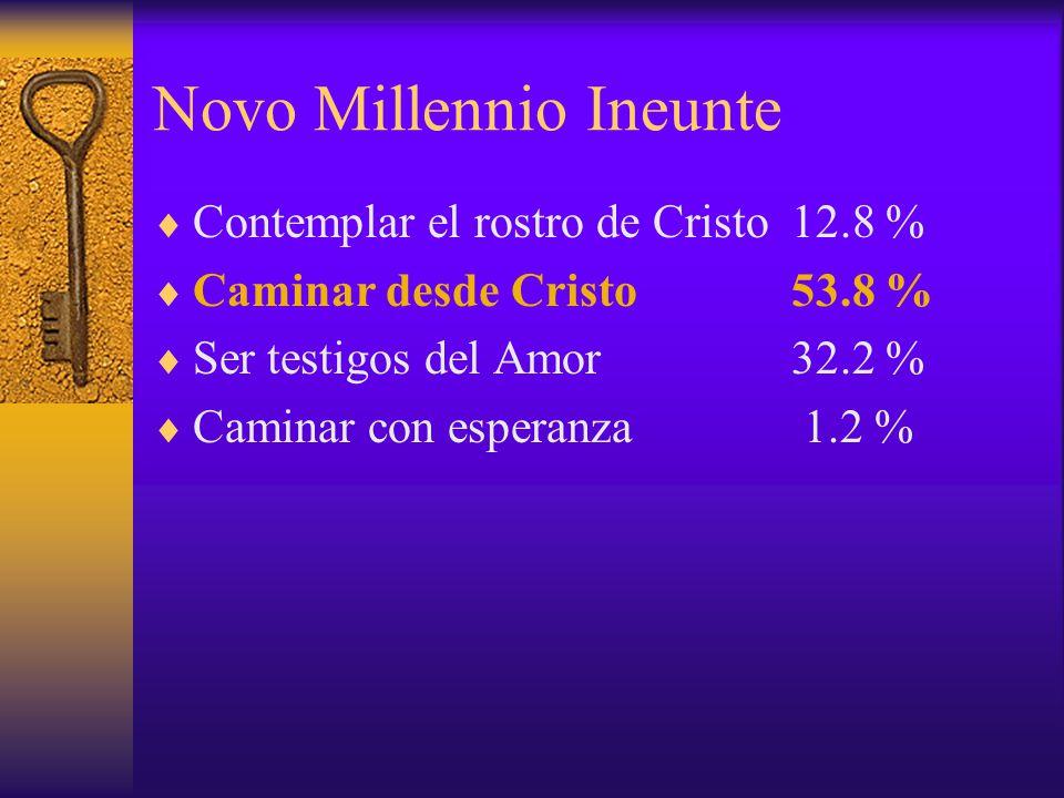 Novo Millennio Ineunte Contemplar el rostro de Cristo 12.8 % Caminar desde Cristo53.8 % Ser testigos del Amor32.2 % Caminar con esperanza 1.2 %