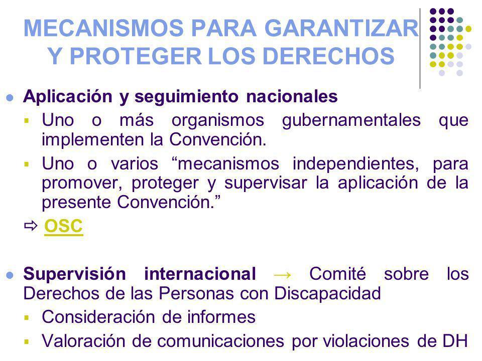 MECANISMOS PARA GARANTIZAR Y PROTEGER LOS DERECHOS Aplicación y seguimiento nacionales Uno o más organismos gubernamentales que implementen la Convenc