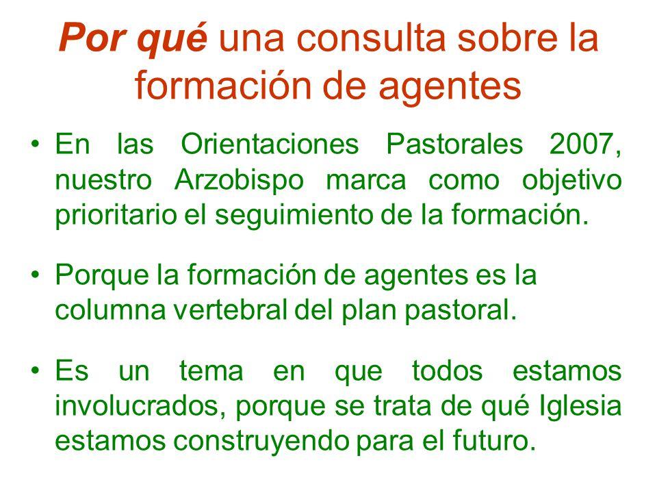 Por qué una consulta sobre la formación de agentes En las Orientaciones Pastorales 2007, nuestro Arzobispo marca como objetivo prioritario el seguimiento de la formación.