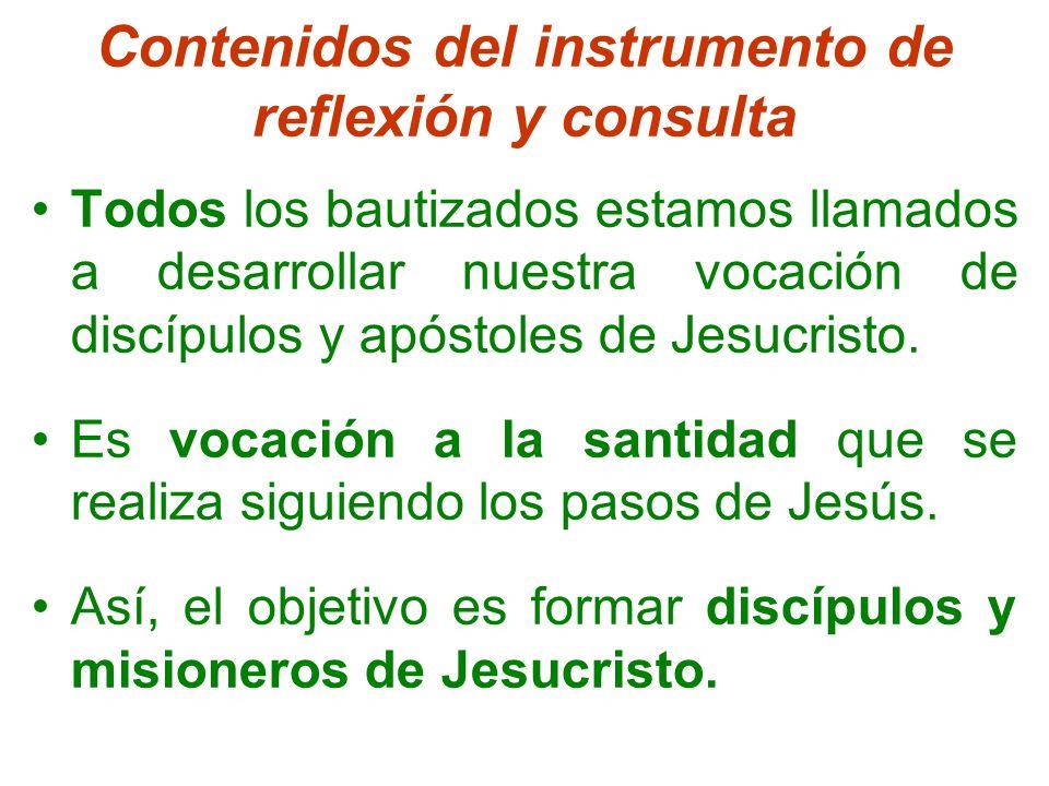 Contenidos del instrumento de reflexión y consulta Todos los bautizados estamos llamados a desarrollar nuestra vocación de discípulos y apóstoles de Jesucristo.
