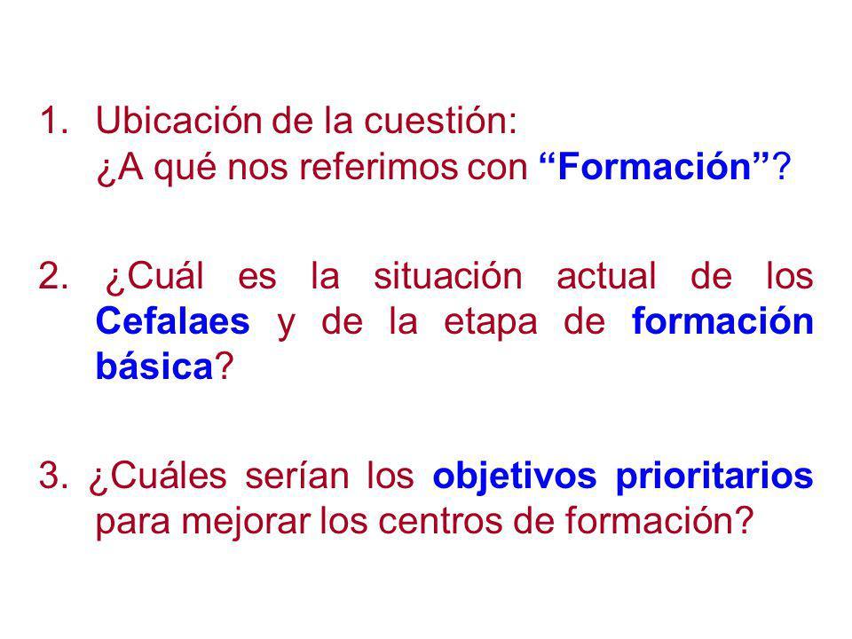 1.Ubicación de la cuestión: ¿A qué nos referimos con Formación.