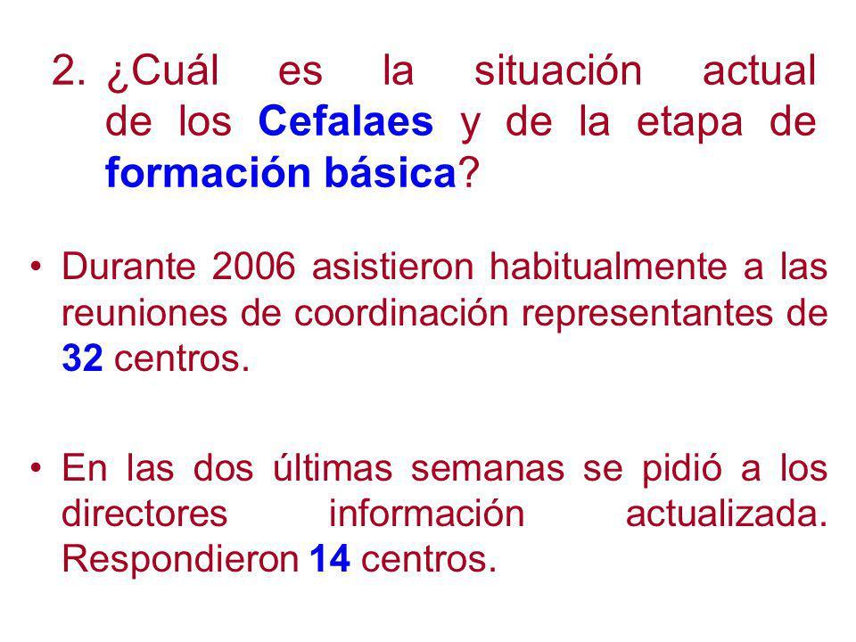 2.¿Cuál es la situación actual de los Cefalaes y de la etapa de formación básica.