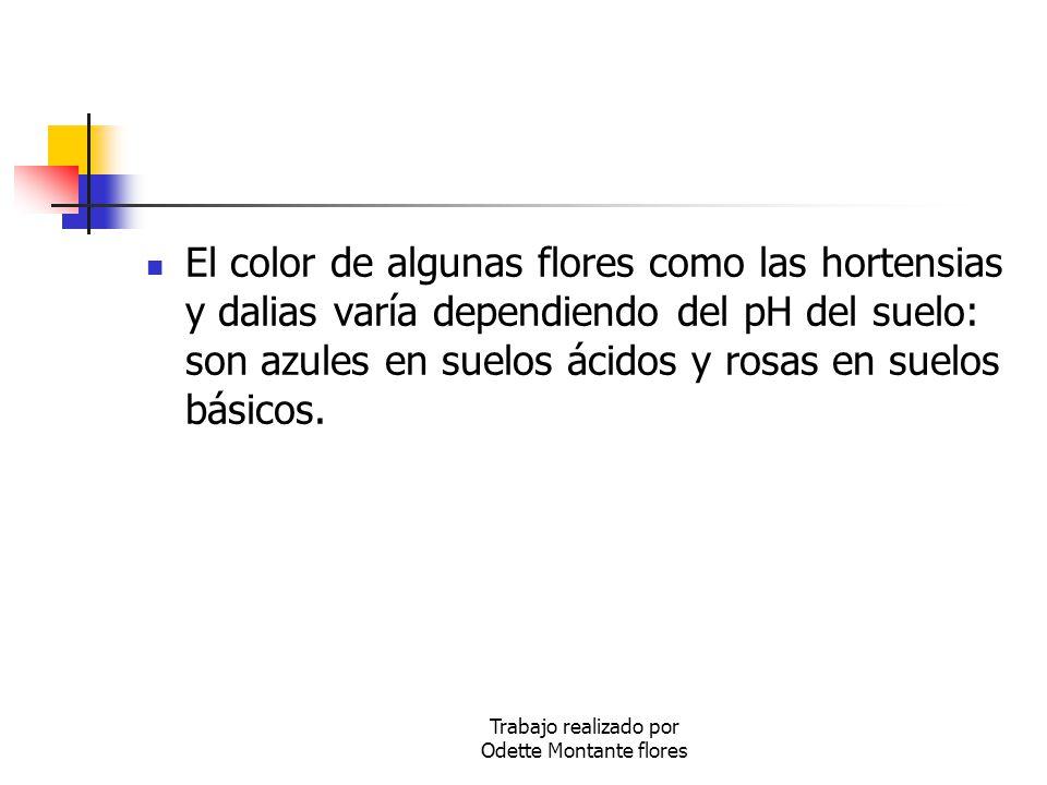 Trabajo realizado por Odette Montante flores El color de algunas flores como las hortensias y dalias varía dependiendo del pH del suelo: son azules en