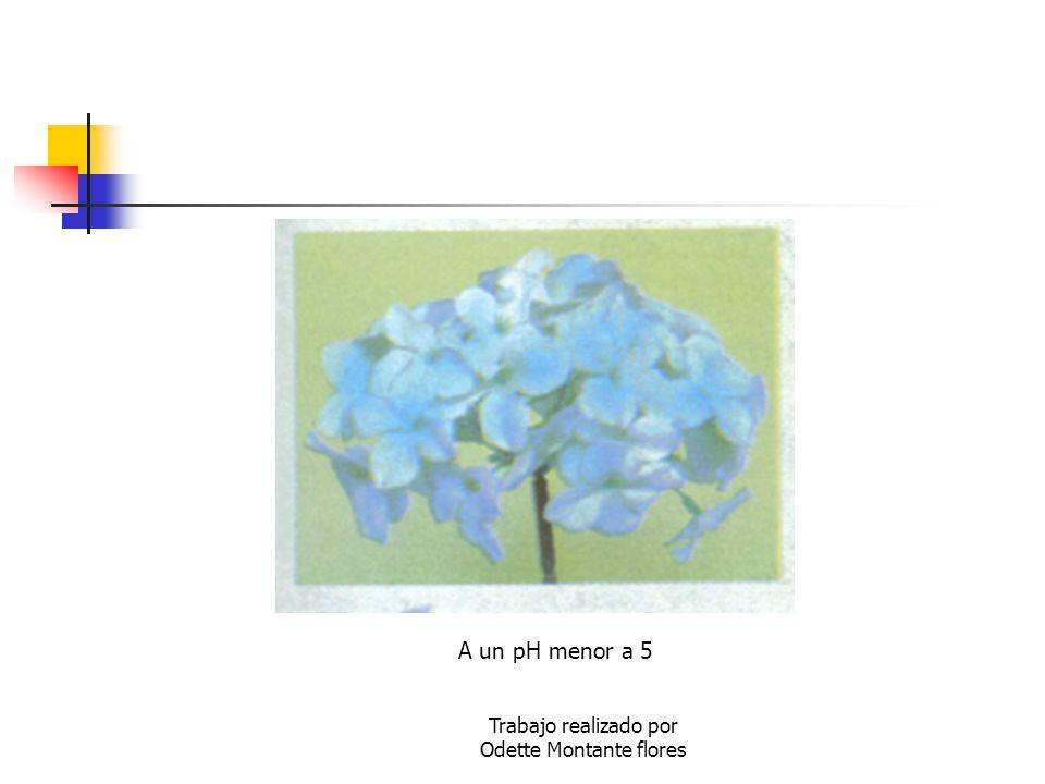 Trabajo realizado por Odette Montante flores A un pH menor a 5
