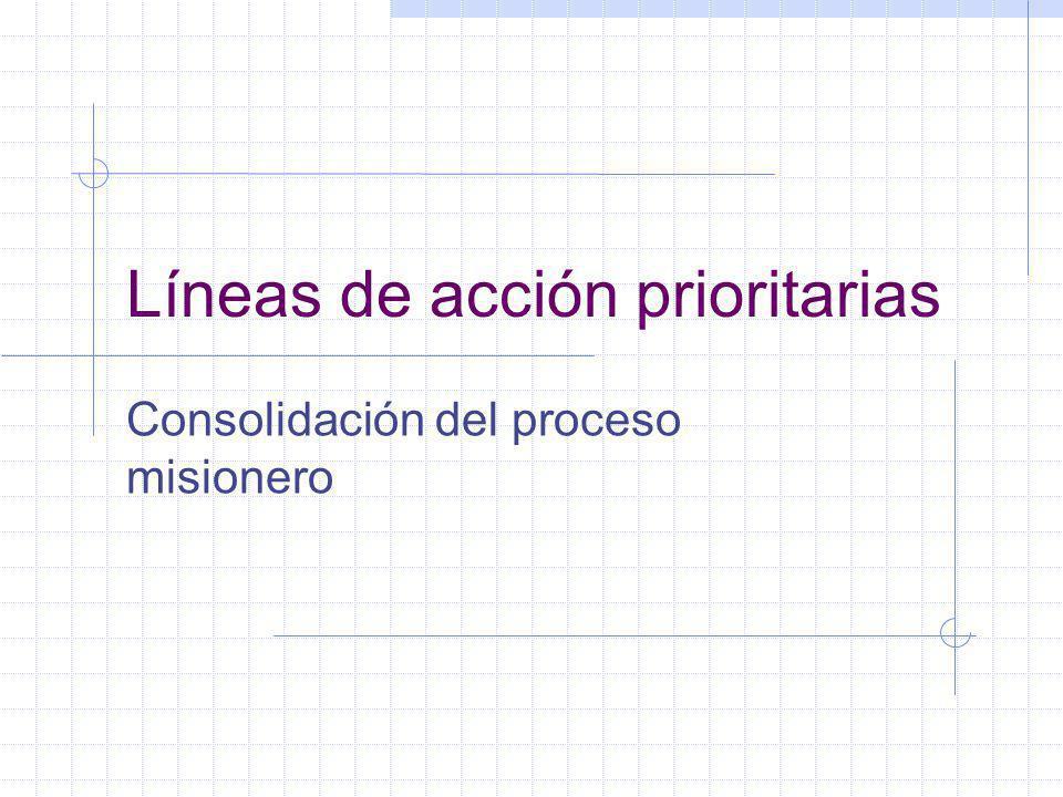 Líneas de acción prioritarias Consolidación del proceso misionero