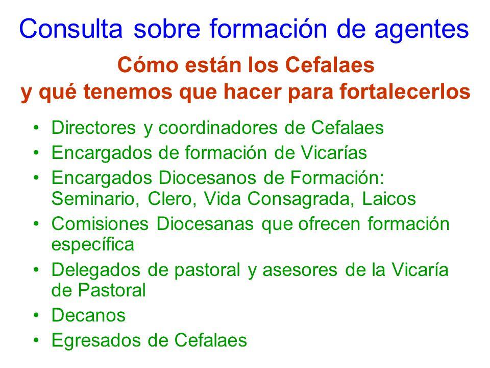 Consulta sobre formación de agentes Directores y coordinadores de Cefalaes Encargados de formación de Vicarías Encargados Diocesanos de Formación: Sem