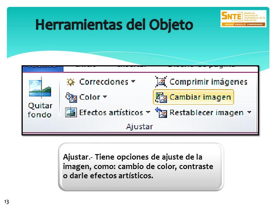 Ajustar.- Tiene opciones de ajuste de la imagen, como: cambio de color, contraste o darle efectos artísticos. 13
