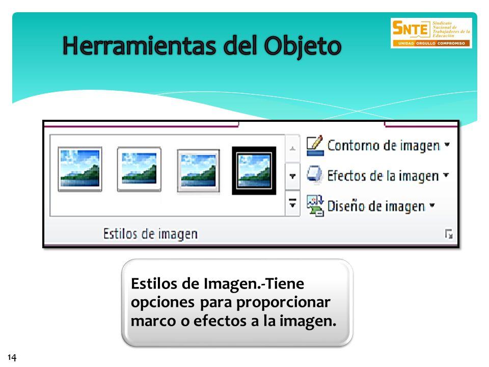 14 Estilos de Imagen.-Tiene opciones para proporcionar marco o efectos a la imagen.