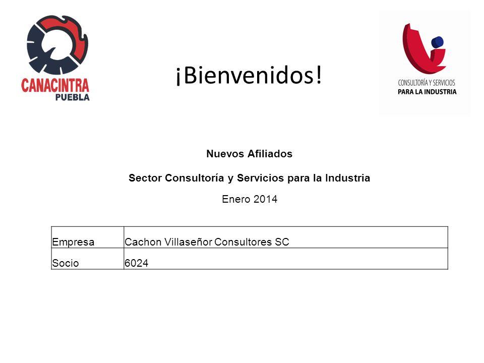 Nuevos Afiliados Sector Consultoría y Servicios para la Industria Enero 2014 EmpresaCachon Villaseñor Consultores SC Socio6024