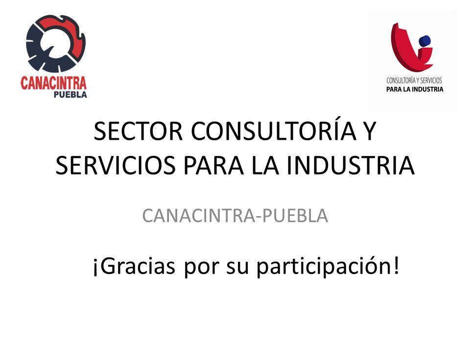 SECTOR CONSULTORÍA Y SERVICIOS PARA LA INDUSTRIA CANACINTRA-PUEBLA ¡Gracias por su participación!
