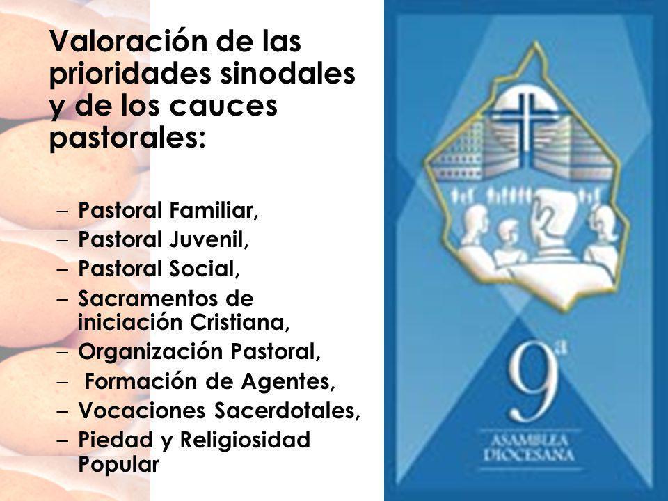 Valoración de las prioridades sinodales y de los cauces pastorales: – Pastoral Familiar, – Pastoral Juvenil, – Pastoral Social, – Sacramentos de inici