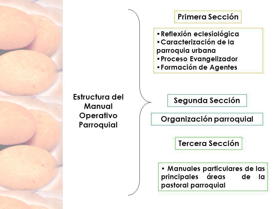 Estructura del Manual Operativo Parroquial Reflexión eclesiológica Caracterización de la parroquia urbana Proceso Evangelizador Formación de Agentes P