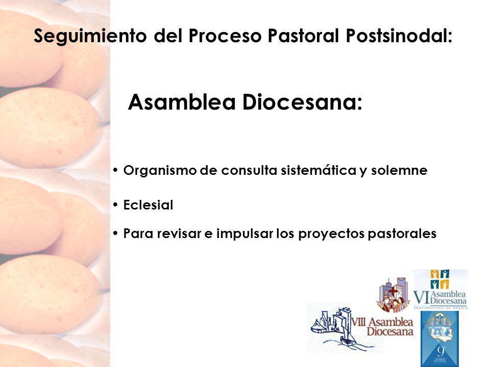 Seguimiento del Proceso Pastoral Postsinodal: Asamblea Diocesana: Organismo de consulta sistemática y solemne Eclesial Para revisar e impulsar los pro