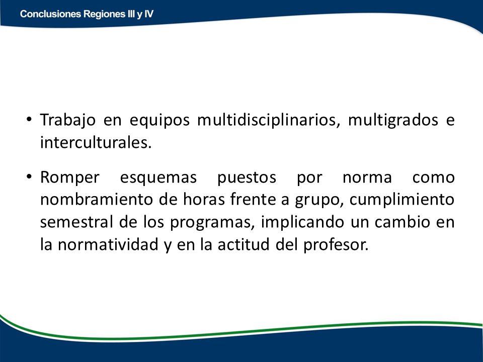 Trabajo en equipos multidisciplinarios, multigrados e interculturales.