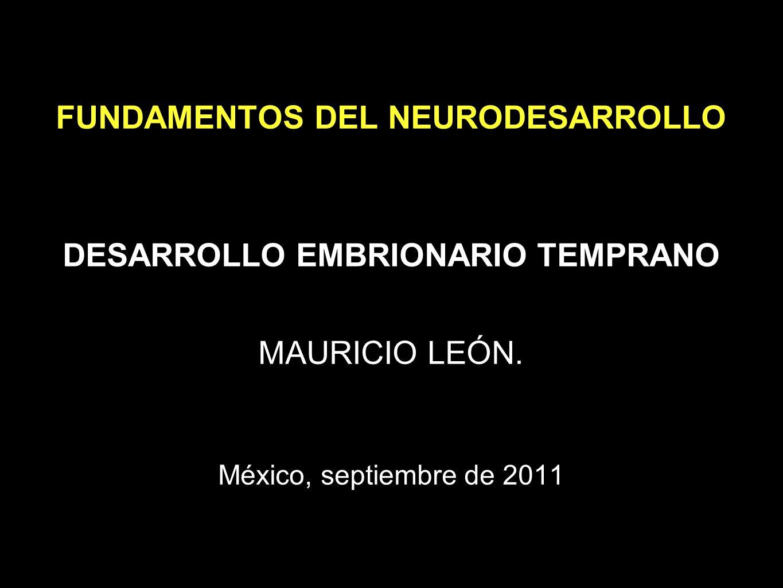 FUNDAMENTOS DEL NEURODESARROLLO DESARROLLO EMBRIONARIO TEMPRANO MAURICIO LEÓN. México, septiembre de 2011