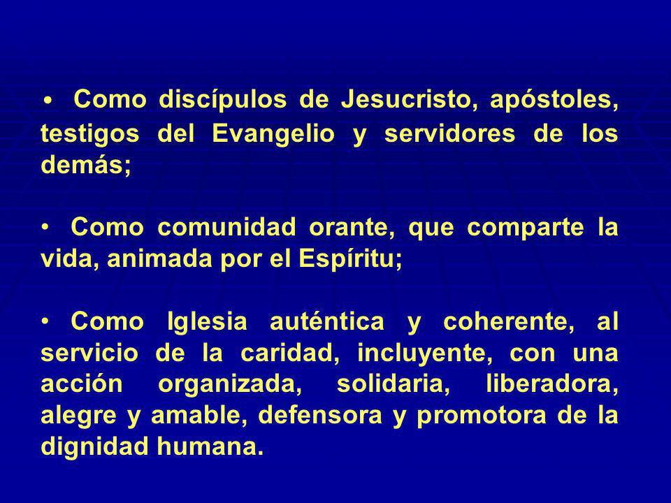 Prioridades para 2006 Estrategia 8 Estrategia 8 Presentar los valores del Evangelio como respuesta a la problemática social.