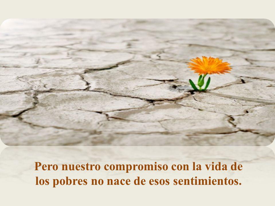 Pero nuestro compromiso con la vida de los pobres no nace de esos sentimientos.