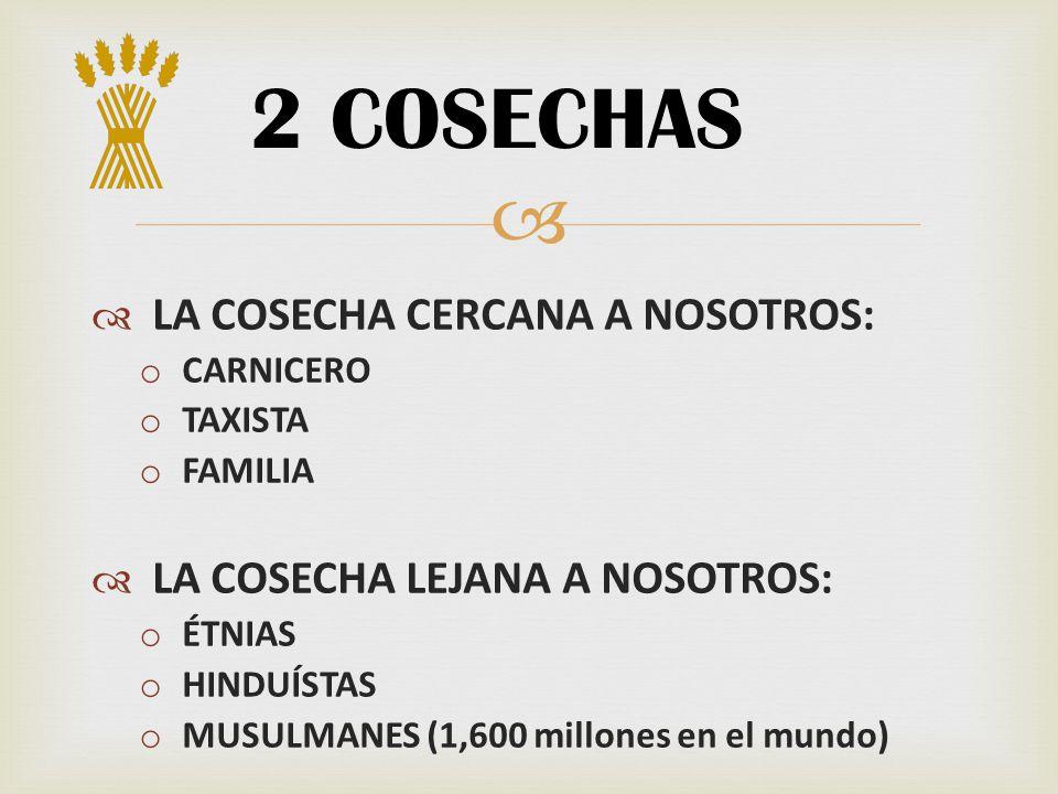 2 COSECHAS LA COSECHA CERCANA A NOSOTROS: o CARNICERO o TAXISTA o FAMILIA LA COSECHA LEJANA A NOSOTROS: o ÉTNIAS o HINDUÍSTAS o MUSULMANES (1,600 mill