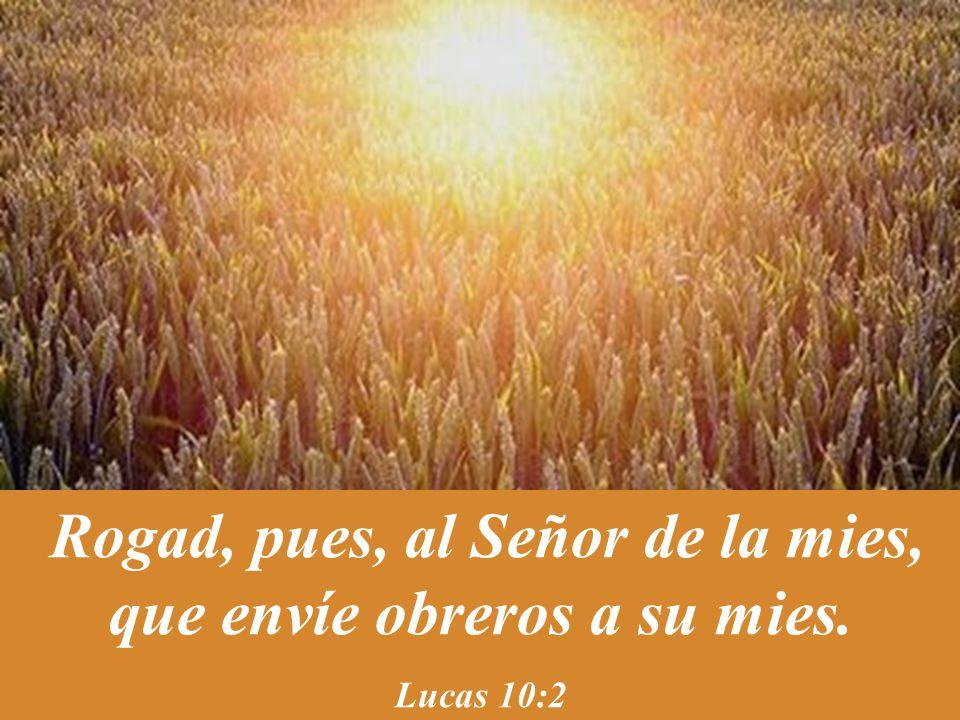 Rogad, pues, al Señor de la mies, que envíe obreros a su mies. Lucas 10:2