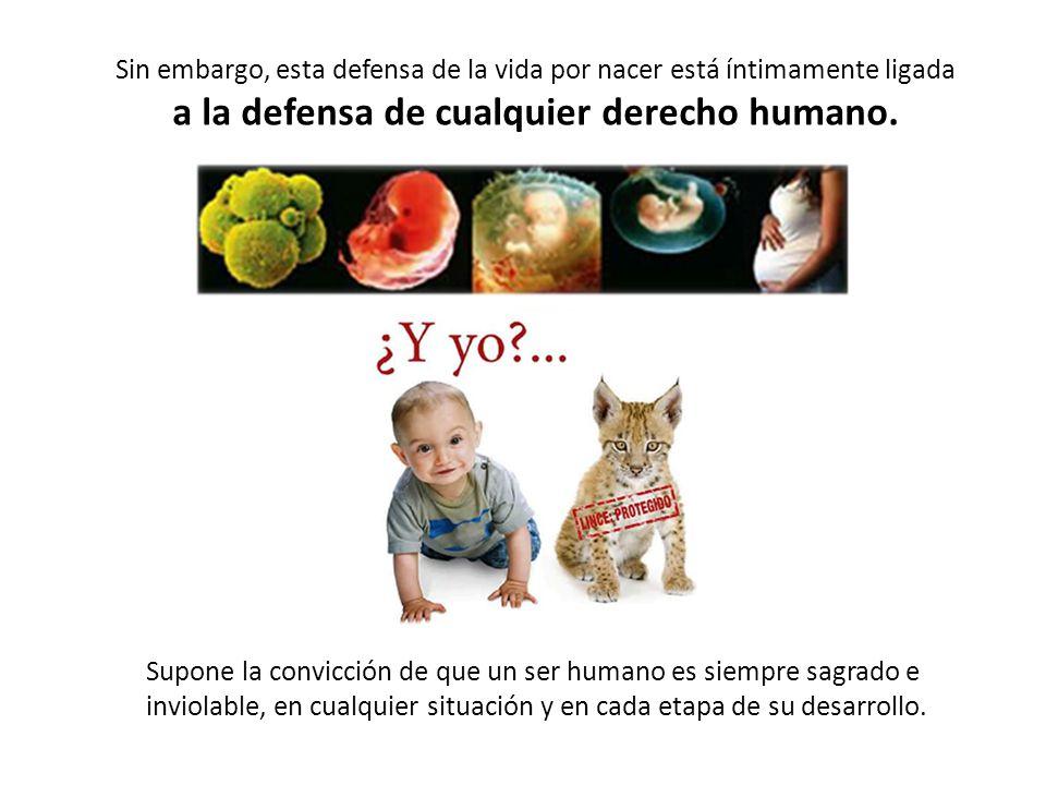 Sin embargo, esta defensa de la vida por nacer está íntimamente ligada a la defensa de cualquier derecho humano.
