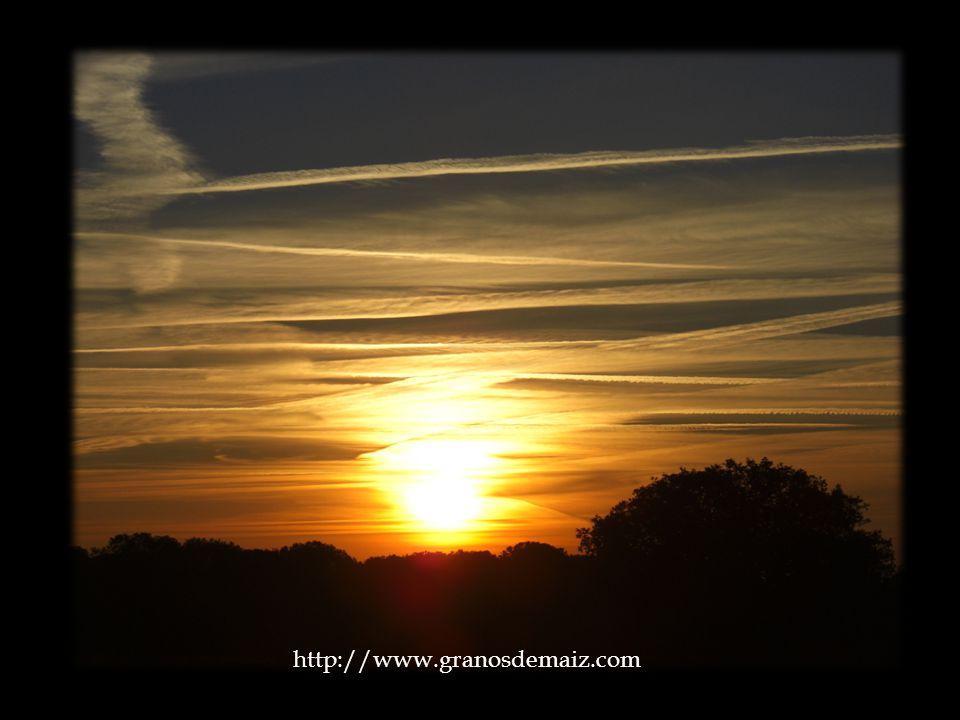 http://www.granosdemaiz.com La tentación se convertirá entonces en una invitación del amor divino, y la respuesta a esta invitación se llama propiamen