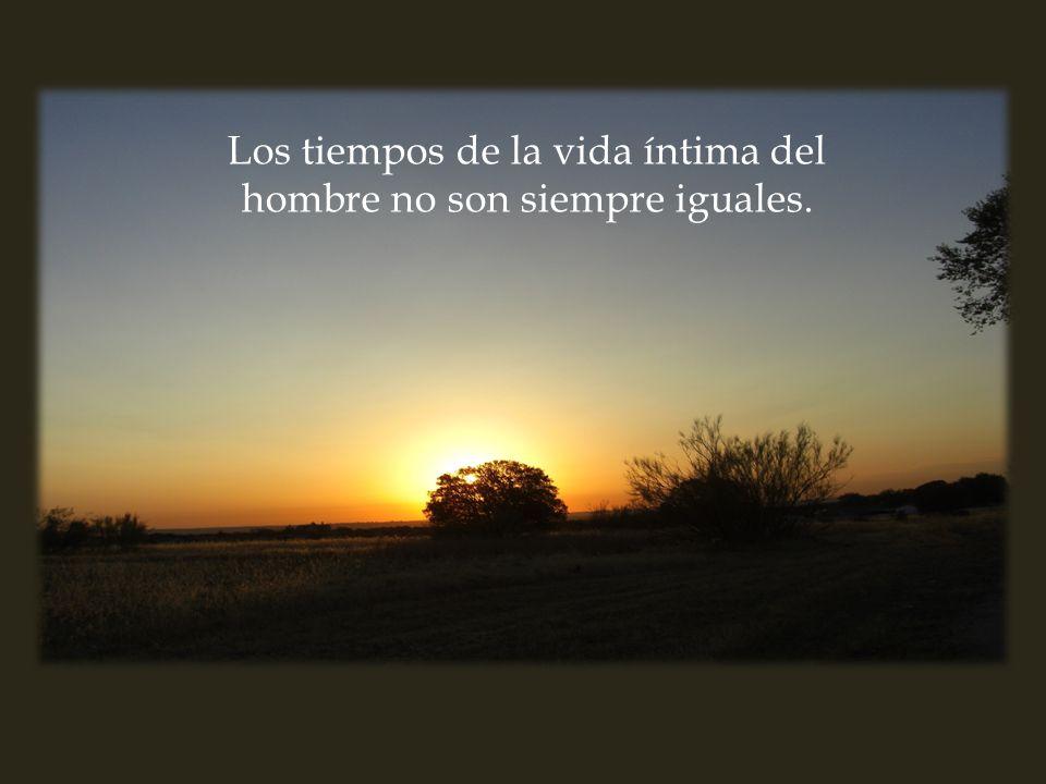19) la oración de la decisión Por favor, no toques el ratón CATEQUESIS DE LA ORACIÓN