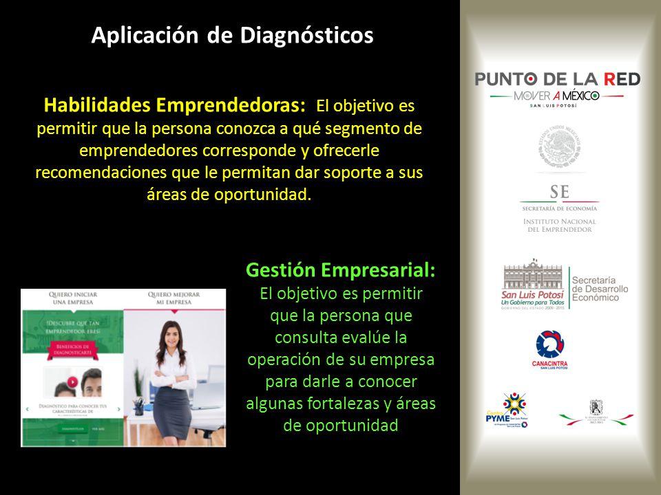 Aplicación de Diagnósticos Habilidades Emprendedoras: El objetivo es permitir que la persona conozca a qué segmento de emprendedores corresponde y ofr