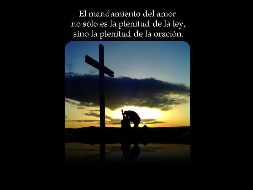 Toda elevación del corazón que apunta directamente a Dios es oración. Y la plenitud pura de esta oración tiene por nombre AMOR CRISTIANO
