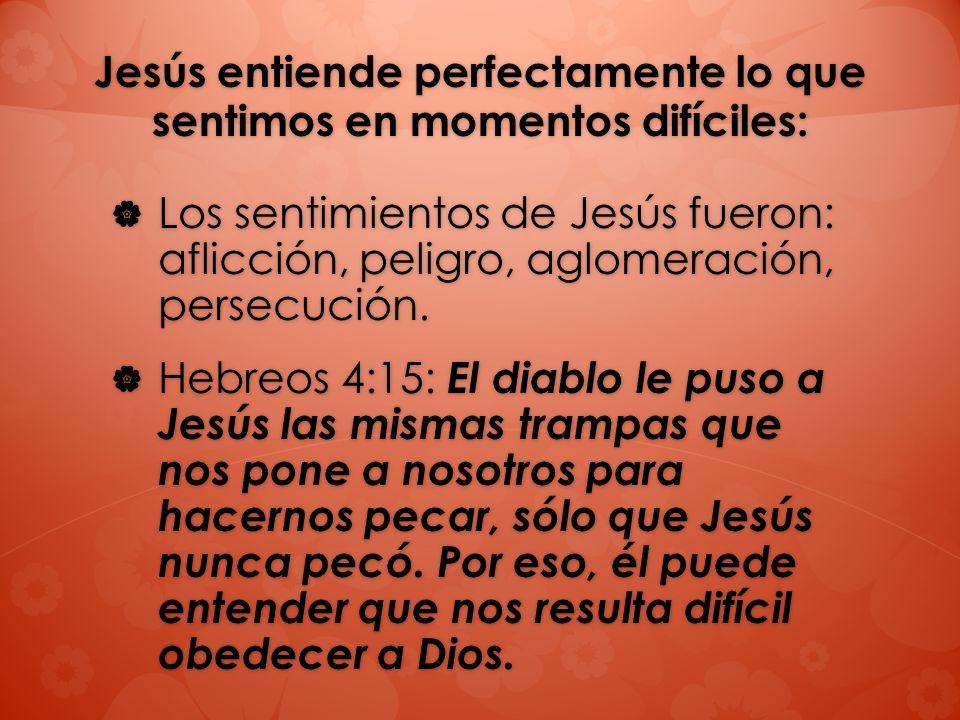Jesús entiende perfectamente lo que sentimos en momentos difíciles: Los sentimientos de Jesús fueron: aflicción, peligro, aglomeración, persecución. L