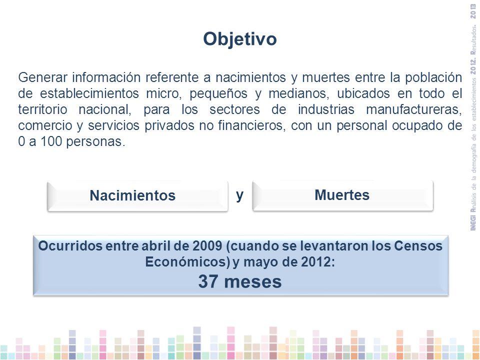 Distribución de nacimientos y muertes de establecimientos según tamaño (2009 –2012) 11 a 30 personas ocupadas 31 a 100 personas ocupadas 0 a 10 personas ocupadas NacimientosMuertes
