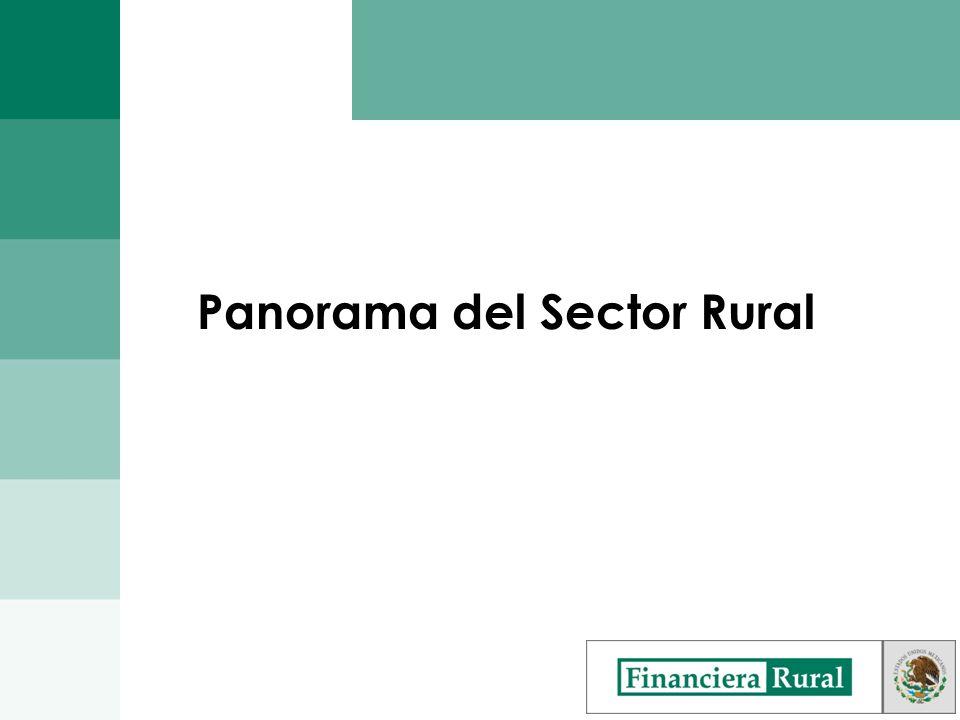 Evolución de Financiera Rural