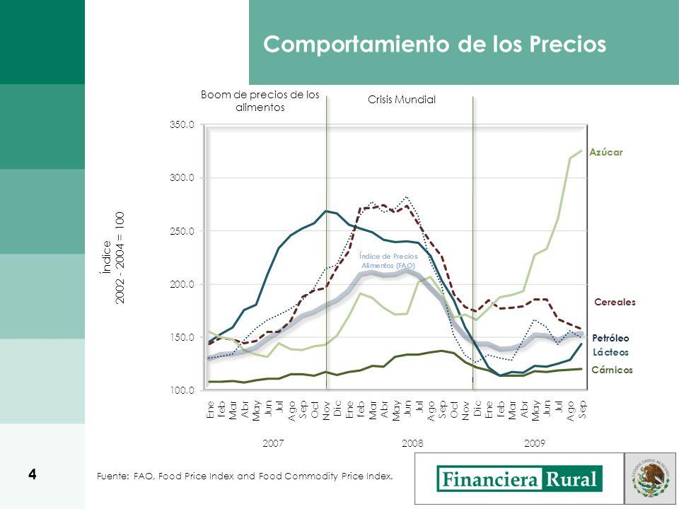 Fuente: FAO, Food Price Index and Food Commodity Price Index. Índice 2002 - 2004 = 100 Boom de precios de los alimentos Crisis Mundial Comportamiento