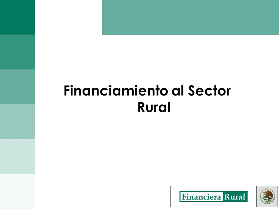 Financiamiento al Sector Rural