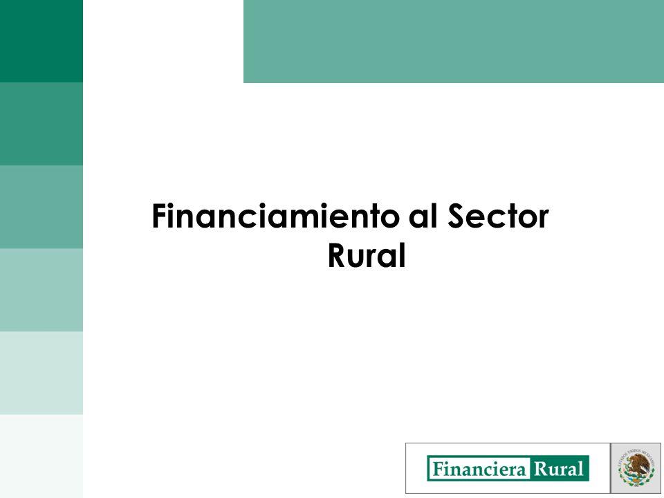 Desarrollo, Capacitación y Asistencia Técnica La Financiera Rural y Agroasemex pueden ofrecer en conjunto: Capacitación y Asistencia Técnica en materia de: Riesgos y Cobertura de Seguros.