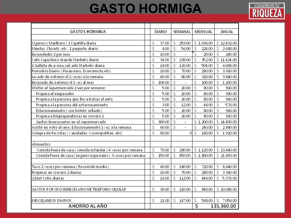 Page 21 GASTO HORMIGA