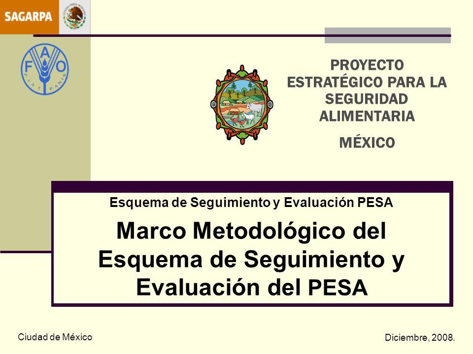 Seguimiento y Evaluación del PESA.Enfoque metodológico.