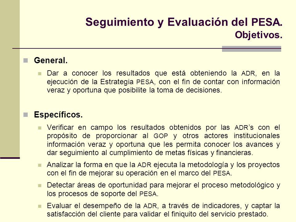 Seguimiento y Evaluación del PESA.Marco conceptual y ámbitos de atención.