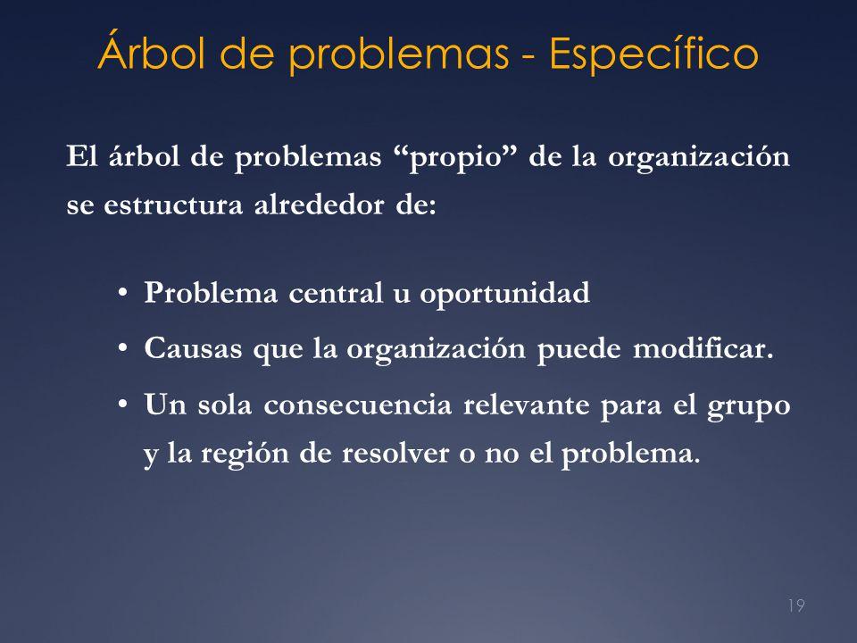 19 Árbol de problemas - Específico El árbol de problemas propio de la organización se estructura alrededor de: Problema central u oportunidad Causas q