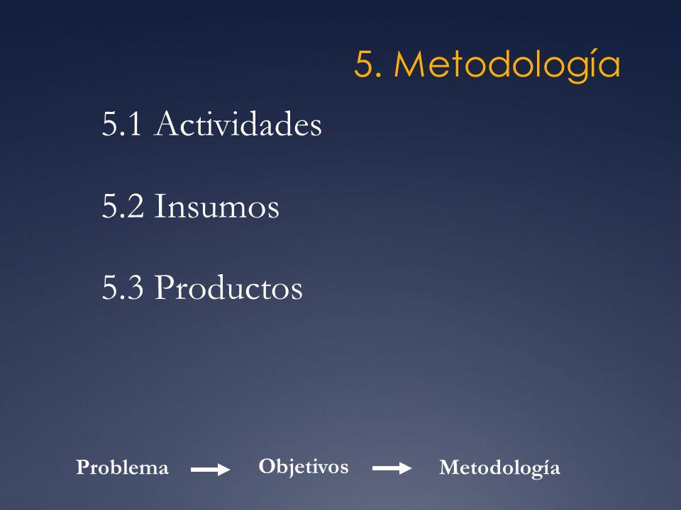 5. Metodología 5.1 Actividades 5.2 Insumos 5.3 Productos Problema Objetivos Metodología