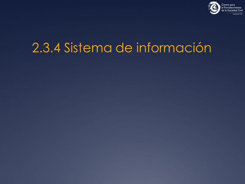2.3.4 Sistema de información