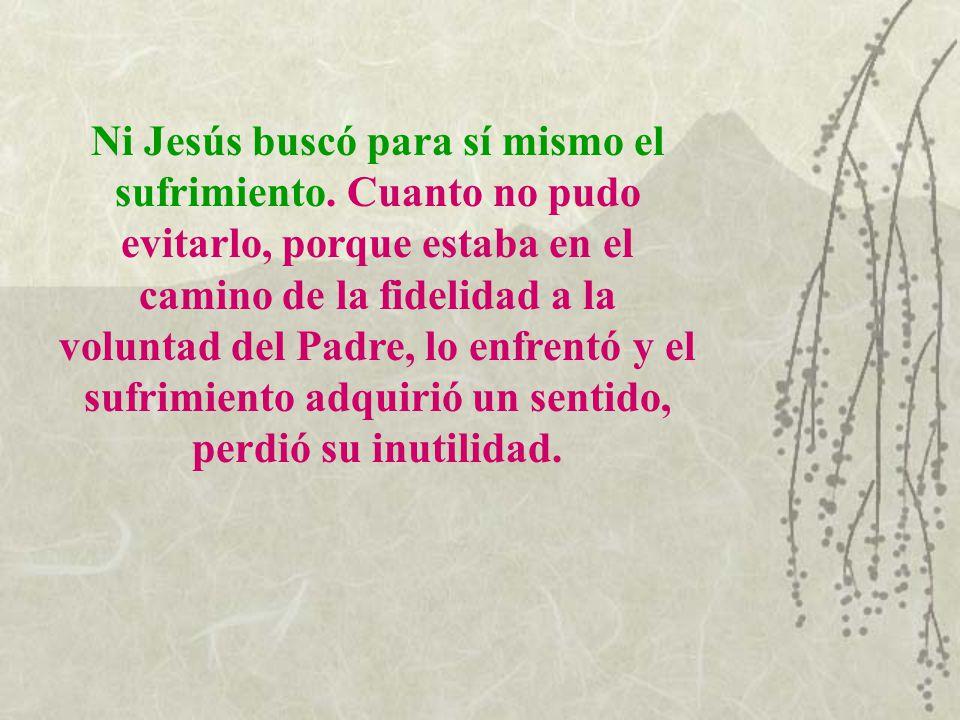 Ni Jesús buscó para sí mismo el sufrimiento. Cuanto no pudo evitarlo, porque estaba en el camino de la fidelidad a la voluntad del Padre, lo enfrentó