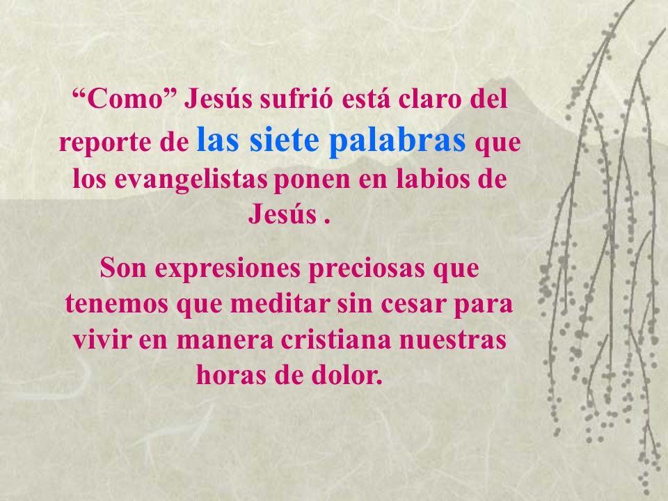 Como Jesús sufrió está claro del reporte de las siete palabras que los evangelistas ponen en labios de Jesús. Son expresiones preciosas que tenemos qu