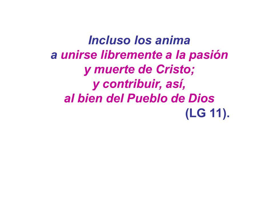Incluso los anima a unirse libremente a la pasión y muerte de Cristo; y contribuir, así, al bien del Pueblo de Dios (LG 11).