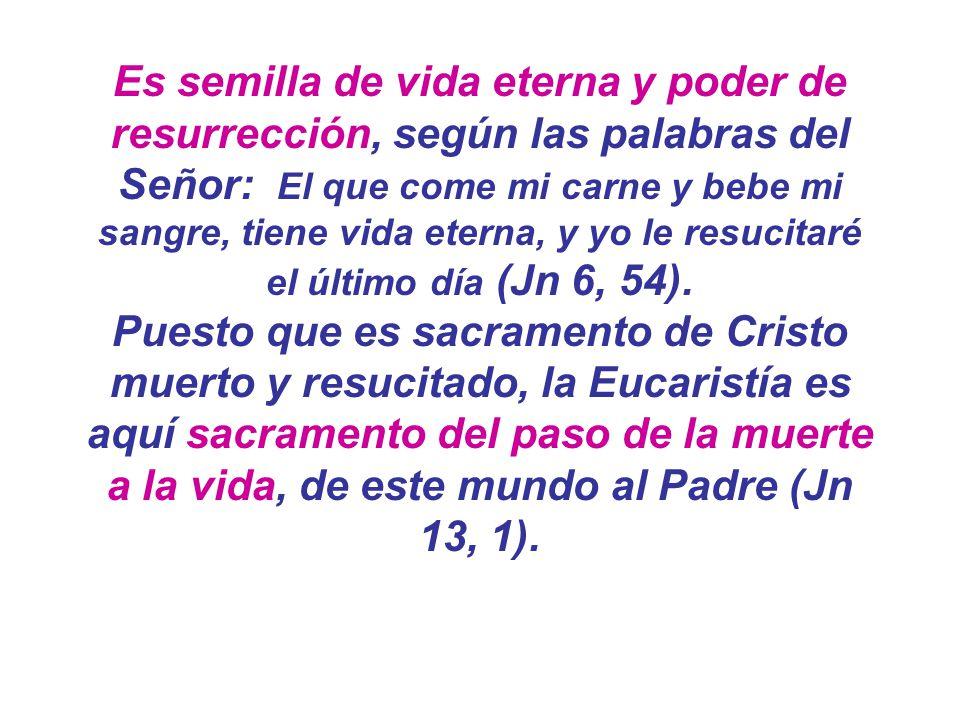Es semilla de vida eterna y poder de resurrección, según las palabras del Señor: El que come mi carne y bebe mi sangre, tiene vida eterna, y yo le res