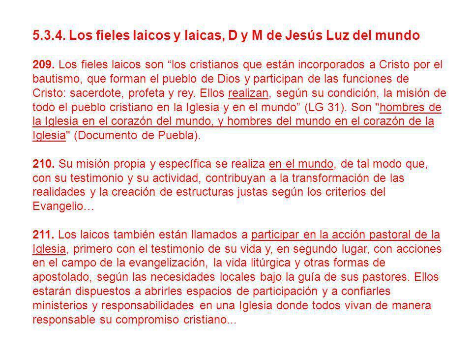 5.3.4. Los fieles laicos y laicas, D y M de Jesús Luz del mundo 209. Los fieles laicos son los cristianos que están incorporados a Cristo por el bauti