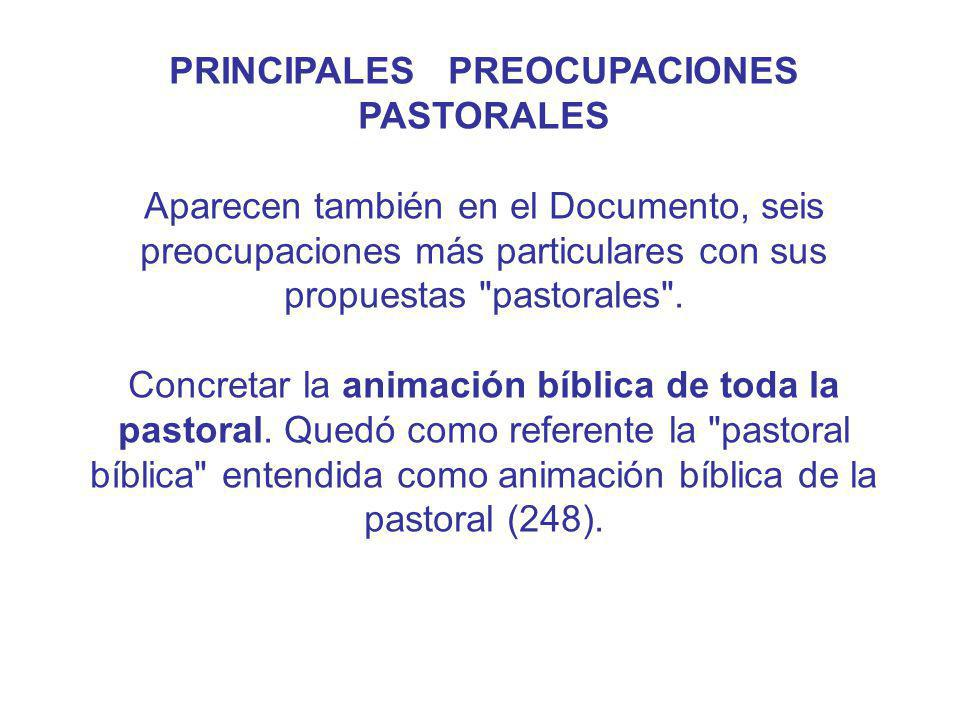 PRINCIPALES PREOCUPACIONES PASTORALES Aparecen también en el Documento, seis preocupaciones más particulares con sus propuestas