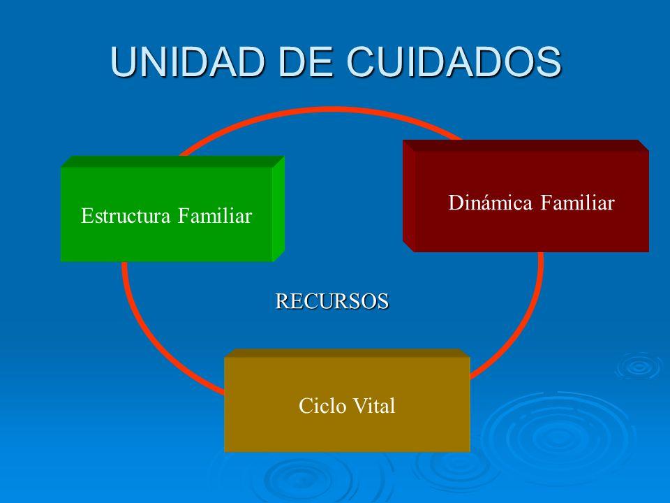 UNIDAD DE CUIDADOS Ciclo Vital Dinámica Familiar Estructura Familiar RECURSOS