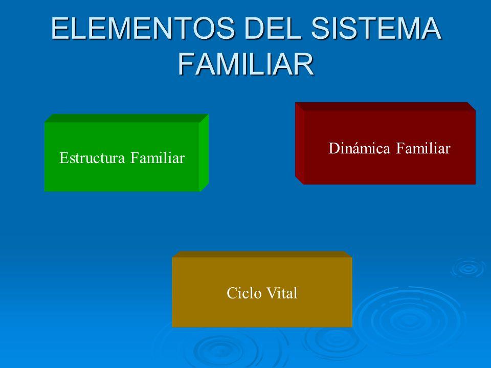 ELEMENTOS DEL SISTEMA FAMILIAR Estructura Familiar Dinámica Familiar Ciclo Vital