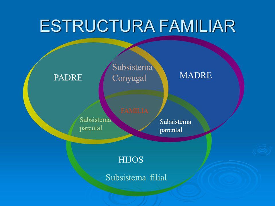 ESTRUCTURA FAMILIAR Subsistema Conyugal Subsistema parental Subsistema filial MADRE PADRE HIJOS Subsistema parental FAMILIA